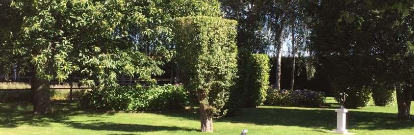 tuinonderhoud-groen2